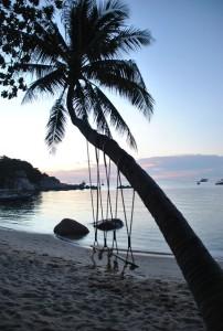 Palme Mae Haad Beach